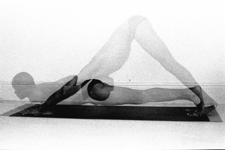 Yoga Sanskrit - Ardo Muhka Svanasana