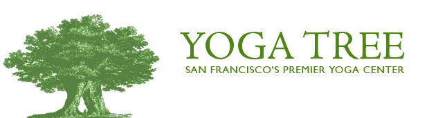 Iyengar Yoga Classes - Yoga Tree San Francisco