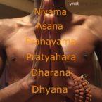 African American Online Yoga Teacher