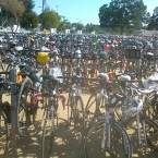 AIDS/Lifecycle 2,500 Bikes at Bike Parking