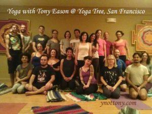 Yoga Tree yoga studio