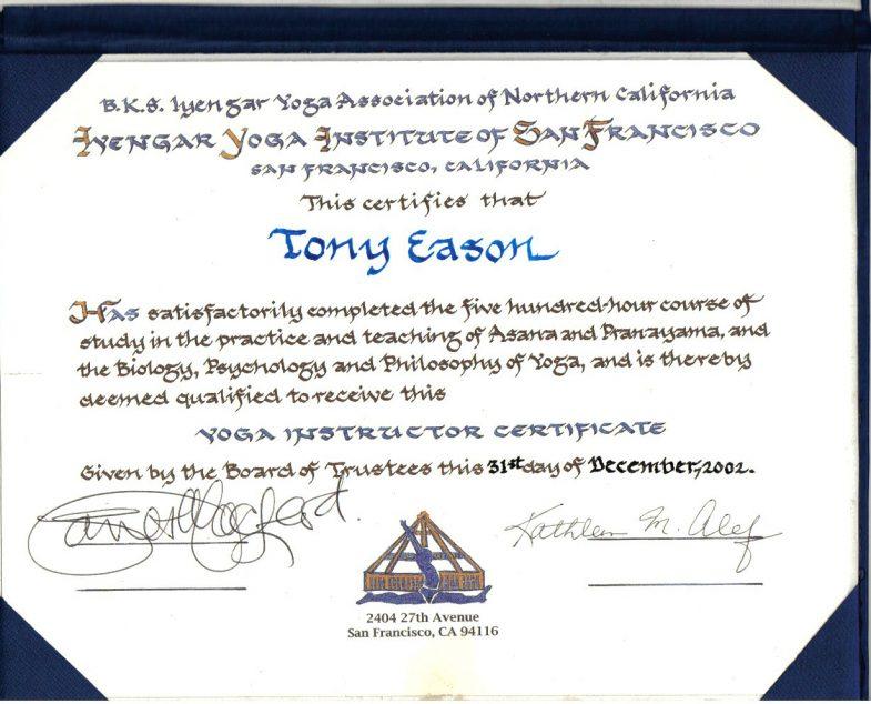 Iyengar Yoga Institute 2 Yr. Yoga Teacher Training Diploma