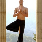 Yoga Teacher - Vrksasana