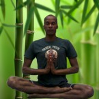 Yoga Tree Photo
