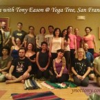 Yoga Tree San Francisco Yoga Class